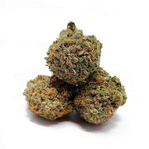 Buy-Pink-Gas-Indica-Weed-Toronto-Pink-Gas-AAA-Toronto-1